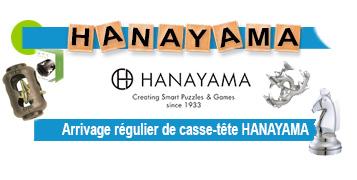 casse-tête Hanayama